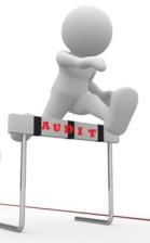 PMP Application Audit